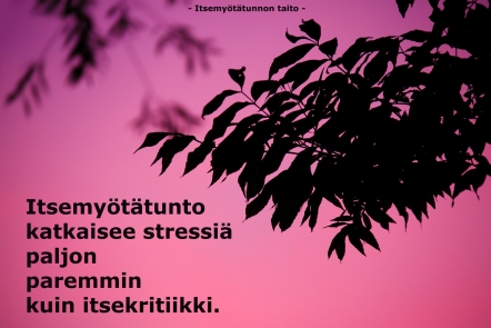 stressinkatkaisu3